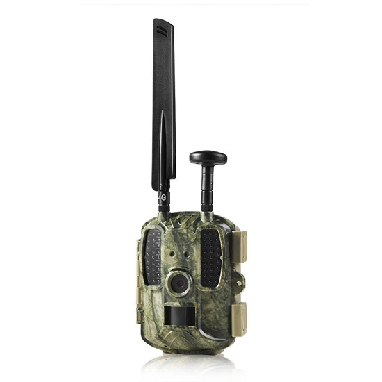 BL480L-P 4G 3G 2G Cellular GPS Trail Cameras